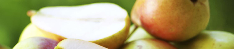 CAGROWN Bartlett pear recipes